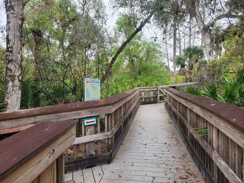Boardwalk over Hickey's Creek. Go left to stay on Hickey's Creek Trail, or straight for the North Marsh Trail.