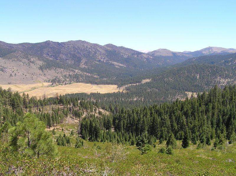 Lower end of Silver King Valley where Silver King Creek joins East Fork Carson River.