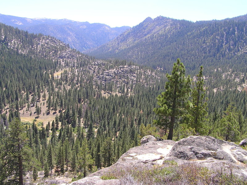 View southwest from trail towards East Fork Carson River.