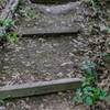 Railroad tie stairs on the way into the trail.