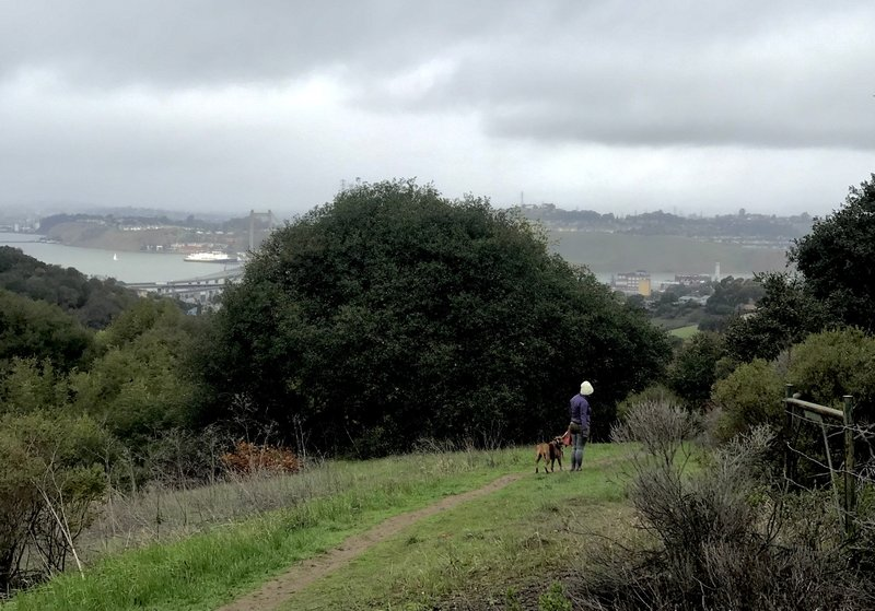 She is walking her dog on a slippery trail on a drizzly day.