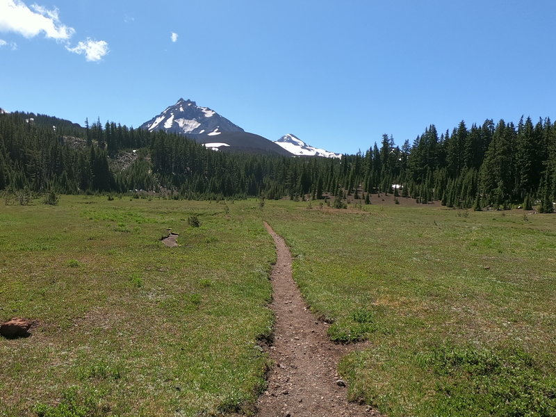 North and Middle Sister from Scott Meadow.