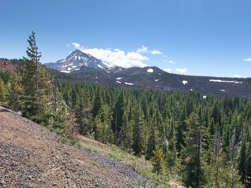 North Sister and 4-in-1 Cone from trail
