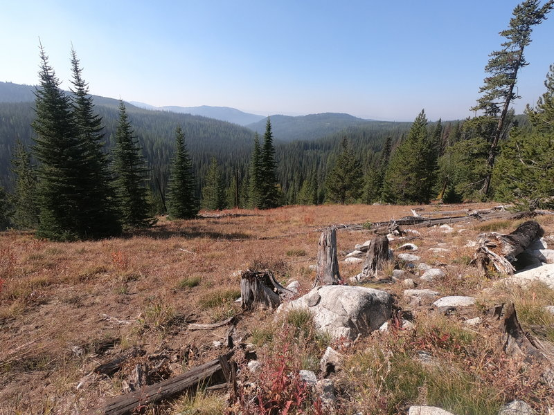 View along Crawfish Lake trail (10-01-2020)