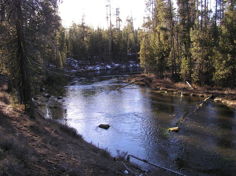Fall River near bend (actually on trail on south side of river) (12-30-2017)