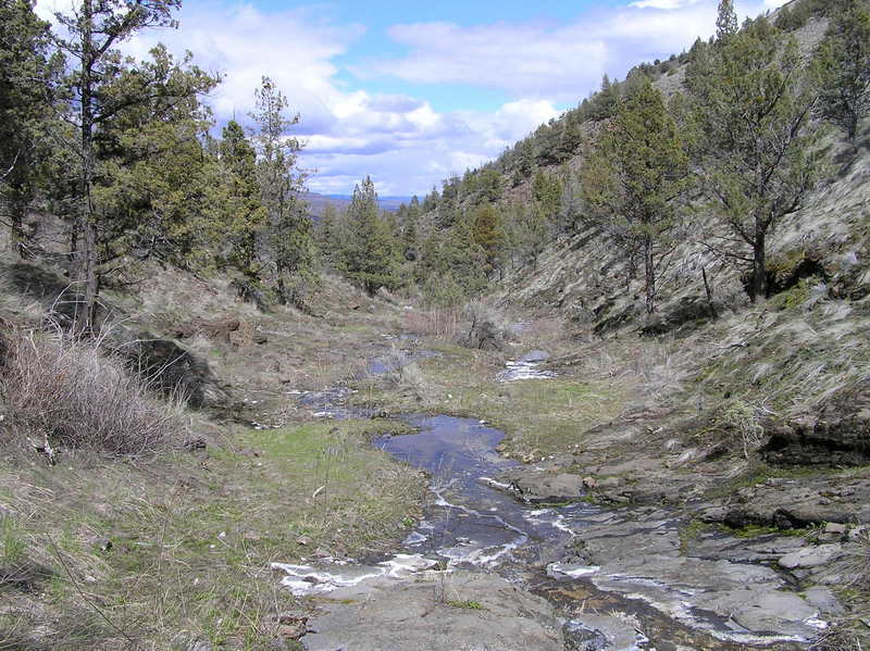 Upper section where intermittent stream flows down canyon (04-12-2019)
