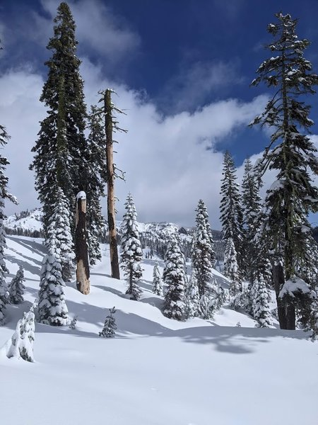 A beautiful view of Lassen National Park in the winter from the trail to Forest Lake.