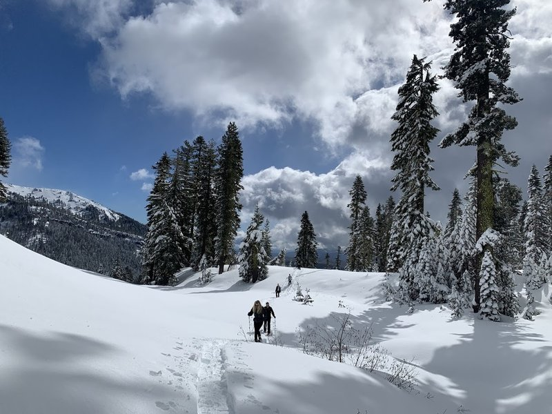 An amazing view from the trail to Forest Lake while snowshoeing on a winter day.