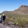 Hikers in the ashy landscape of the Ringtail Trail.