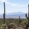 The distant Coyote Mountains from the Gould Mine Trail.