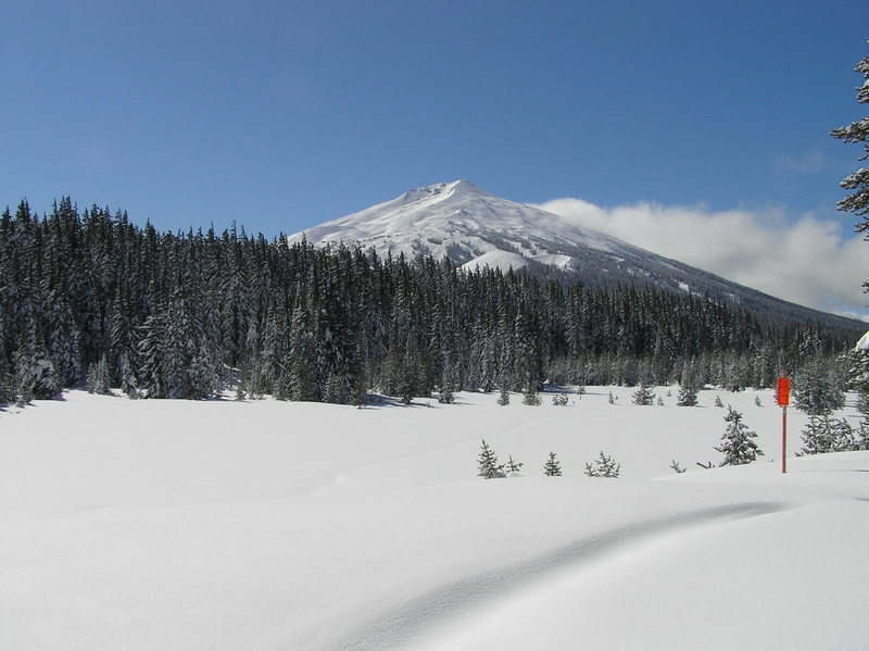 Mt. Bachelor from trail (03-13-2019)
