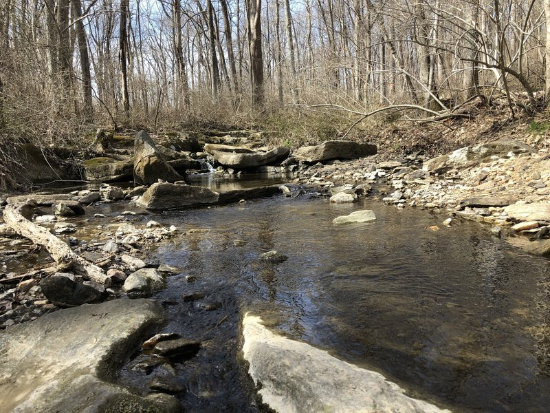 Gently flowing waters highlight this trail