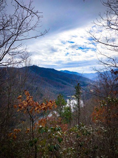 View above Lake Logan on Cold Mountain 50k and 25k course.