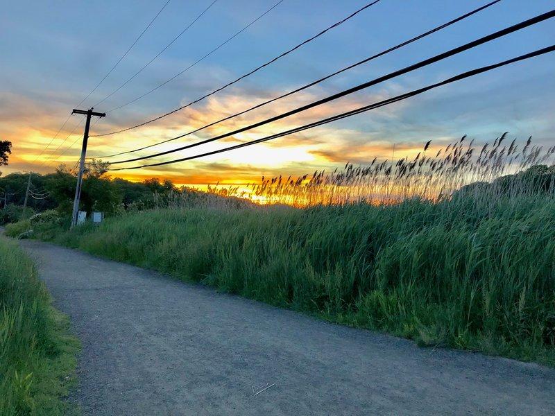 Sunset on the Trolley Trail