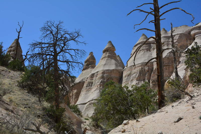 Hoodoos from volcanic tuft along slot canyon trail at Tent Rocks.