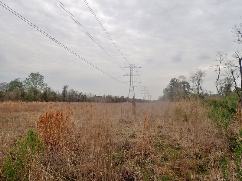 The power line cut running north-south inside the dike.
