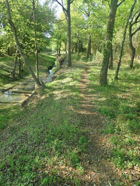Malsbury Trail alongside Turkey Creek.