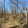 Start of the Deer Trail on a bleak spring day.