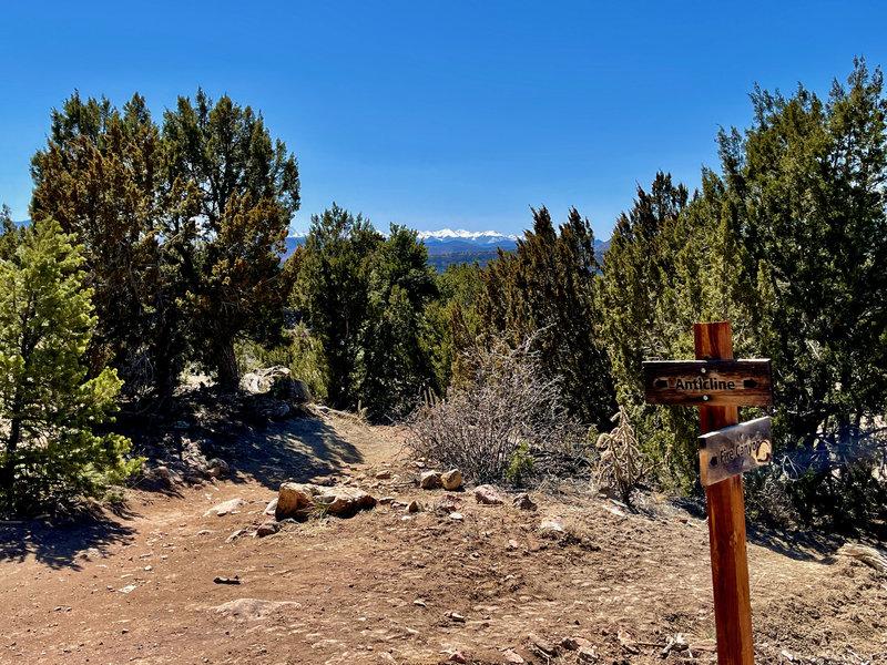 Sangre de Cristo Range from Anticline Trail.