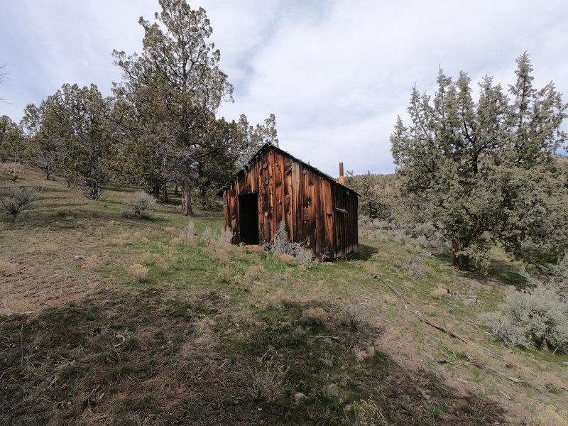 Pat's cabin (4-2-2021)