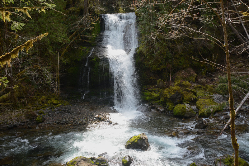 Steep Creek Falls is clearly viewable from the road.