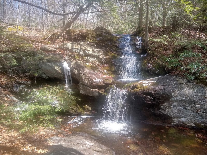 Falls at the intersection of Quarry Hill and South Taconic Trail.