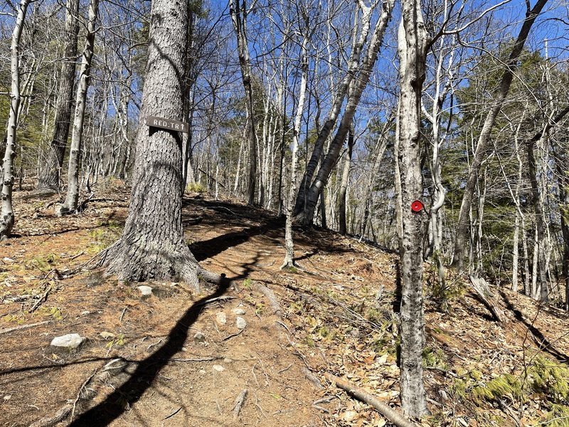 Red Dot Trail