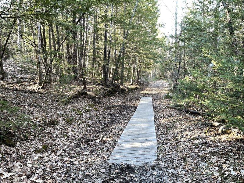 Pond Parish Trail