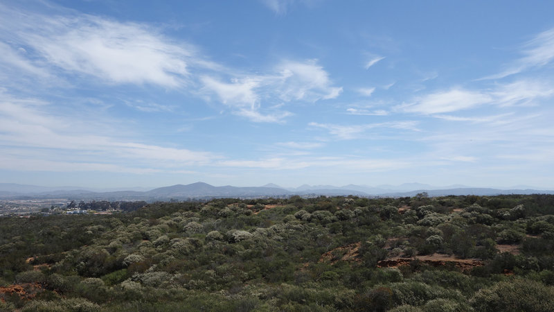 View northeast from the Clews Ranch Rim trail towards Black Mountain.