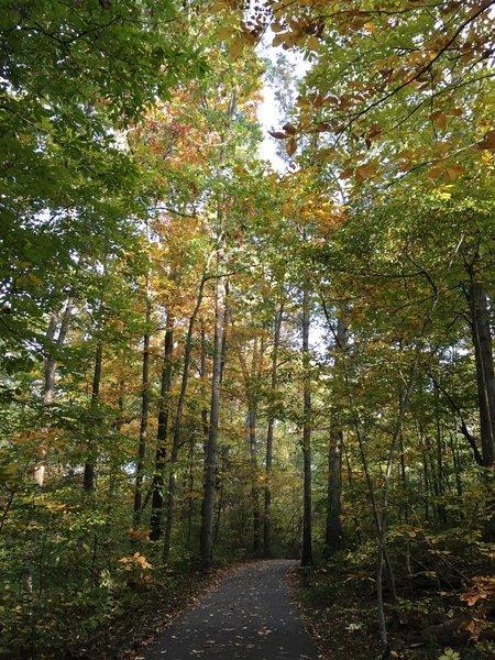 Rocky Run Trail - fall day.