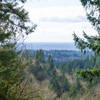 Views from the Shy Bear Lookout