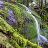 The mossy Doughtry Falls, just off the trail.