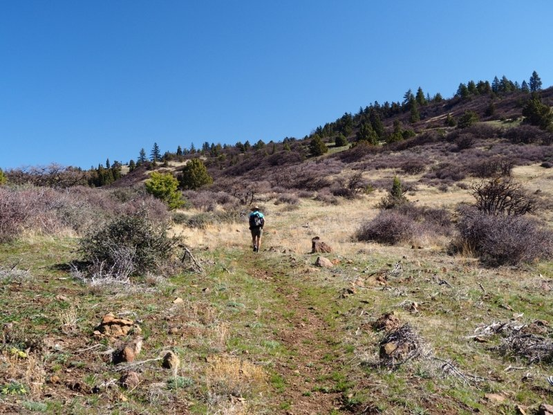 On the trail with Rhyolite Ridge in the distance.