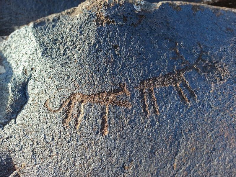 Gegham Mountain Petroglyphs