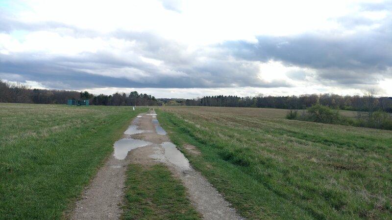 Bridal Trail field