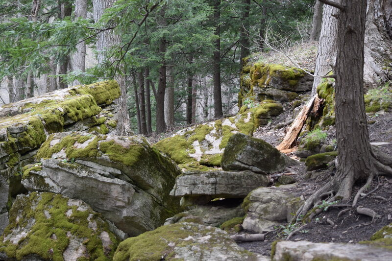 Beautiful rocky landscape.