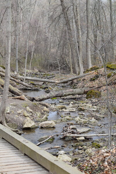 Easy, wide trails, lots of streams and natural woods.