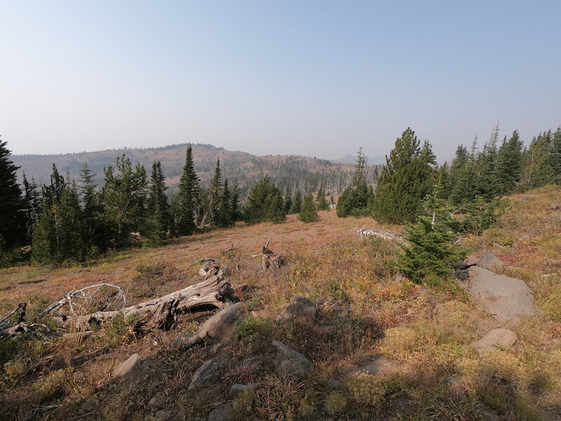 Road's End trail (9-16-2020)
