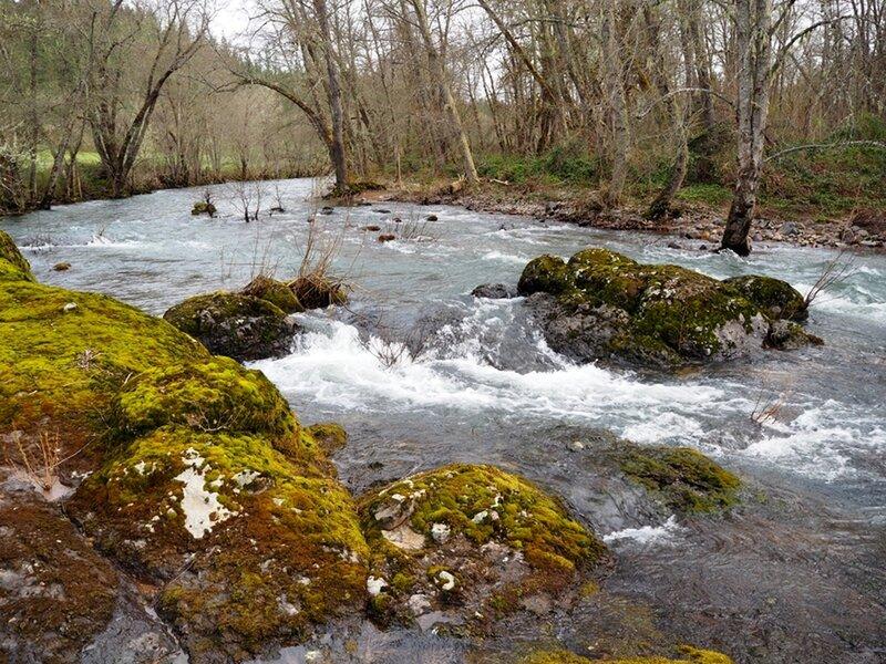 Elk Creek in the spring during high water.