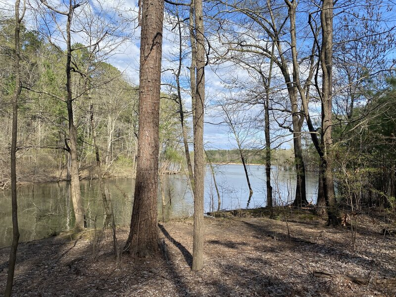 View of Kerr Lake from paved section.