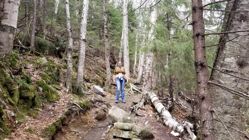 Mid size rocks and roots to navigate. A bit hot in the sun in this section. Became ice then snow higher up the trail. April 19,2021