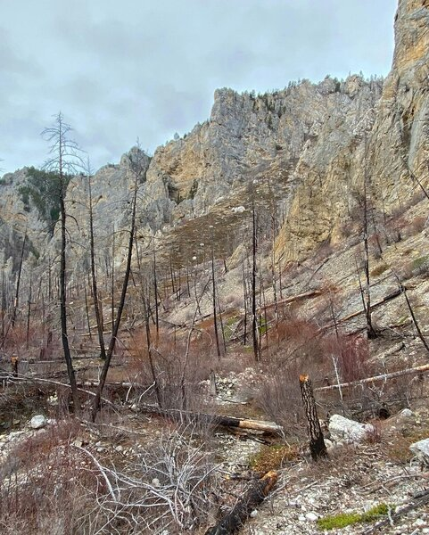 Lower Meriwether Canyon, with some of the deadfall present.