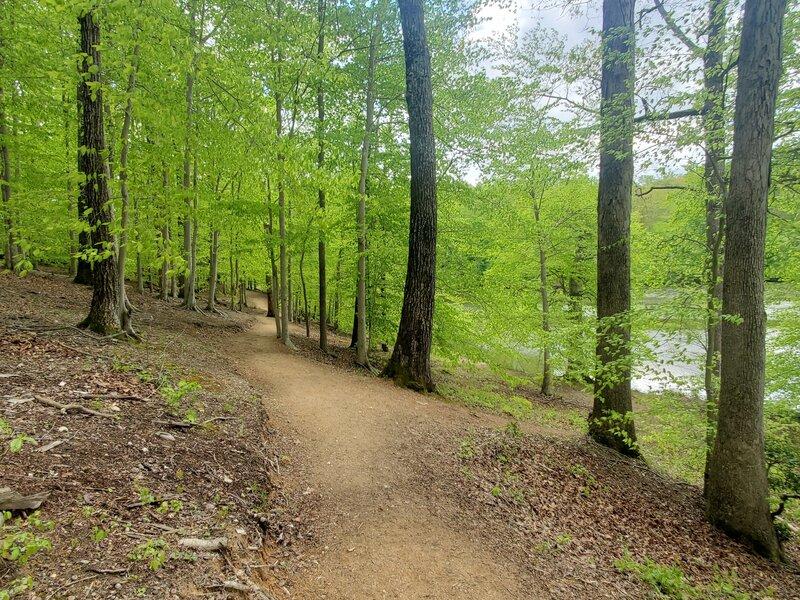 Co-Op Trail