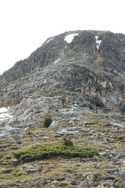 On the ridge from Blowdown Pass up to Gotcha Peak.