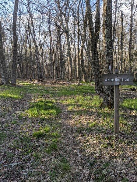 White dot trail sign