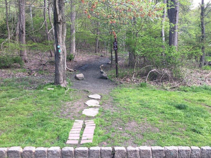 Long Path at parking lot