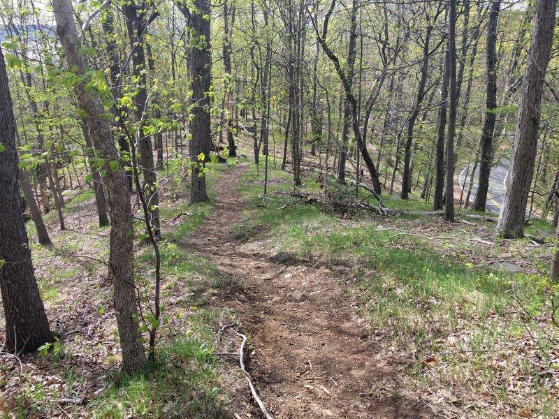 Long Path