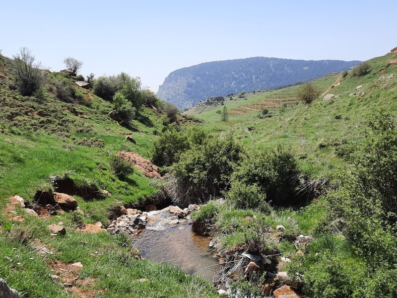 Going down into Tannourine