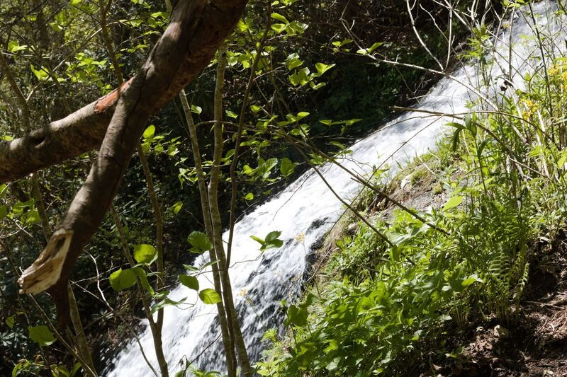 Waterfall as seen from trail.