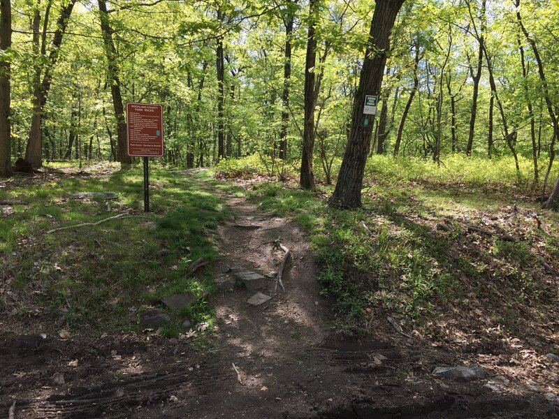Trail entrance at the Clausland Mountain Road.